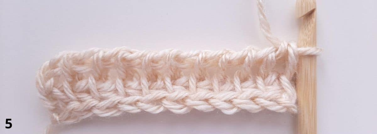 Tunisian Simple Stitch Step 5